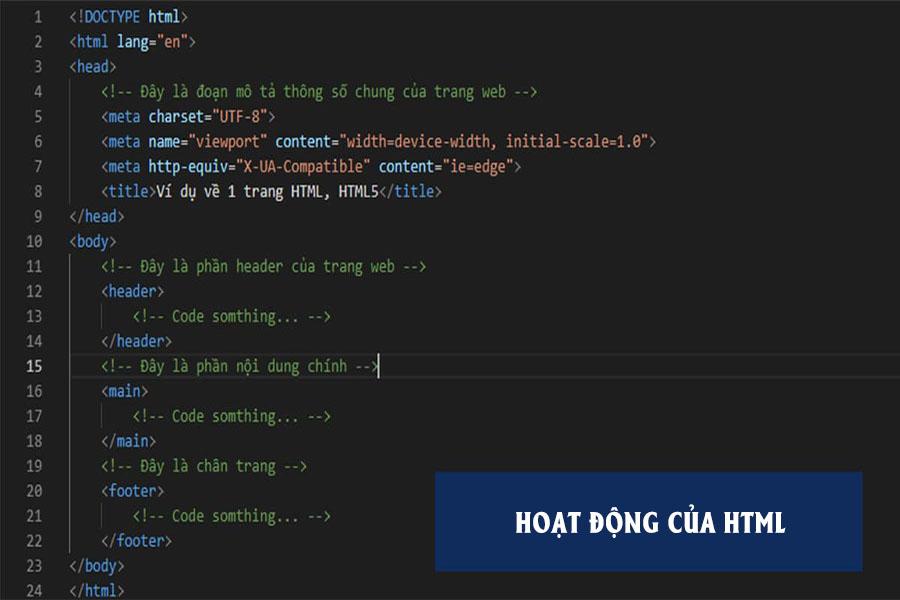 hoat-dong-html