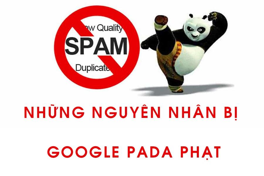 Những nguyên nhân google pada phạt