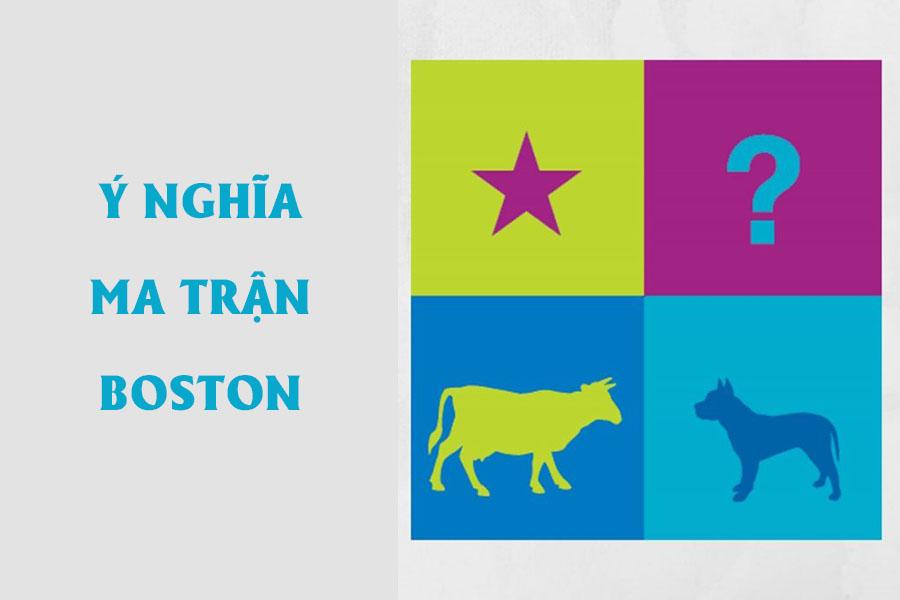y-nghia-Ma-tran-boston-1