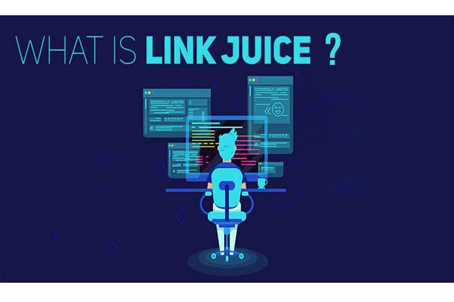 link-juice