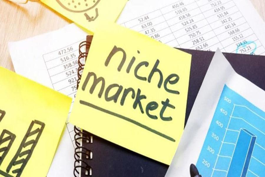niche-market-la-gi-2