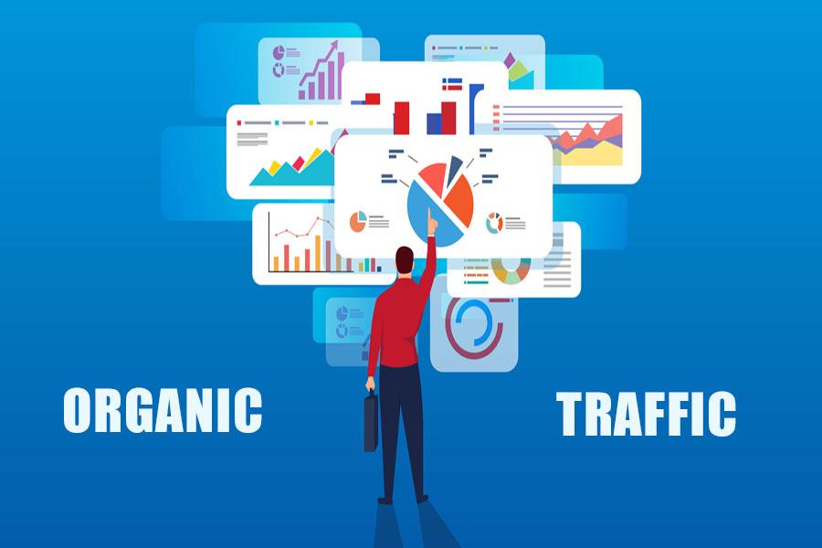 Tầm quan trọng của Organic Traffic đối với Website
